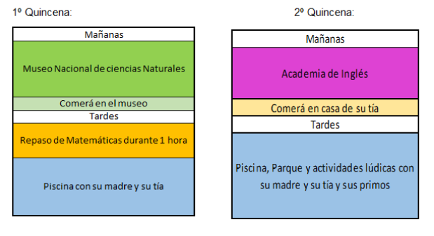 Organización verano